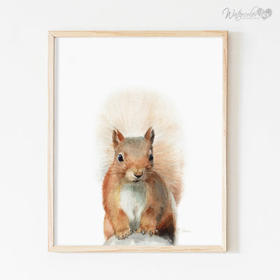 Squirrel Digital Print