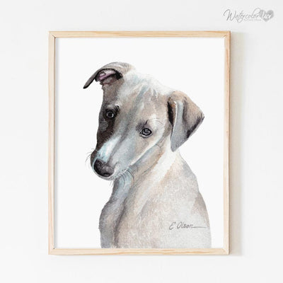 Whippet Puppy Shipped Print