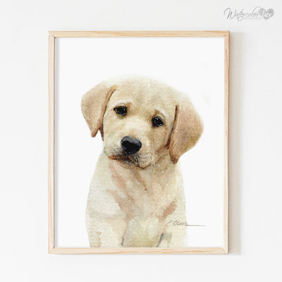 Yellow Labrador Retriever Puppy Shipped Print
