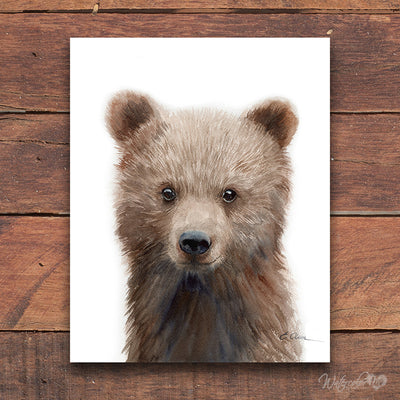 Baby Grizzly Bear Cub Digital Print