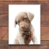 Chesapeake Bay Retriever Puppy Digital Print