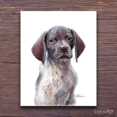 German Shorthaired Pointer Puppy Shipped Print