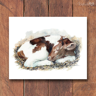 Sleeping Baby Cow Shipped Print