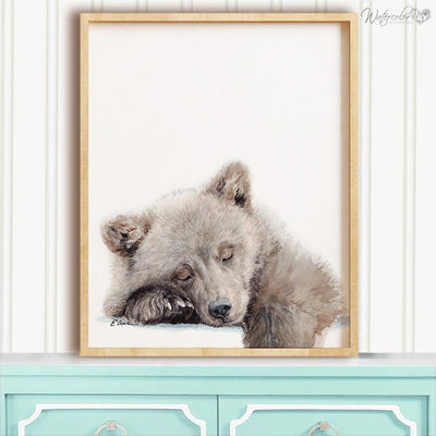 Sleeping Baby Bear Cub Shipped Print