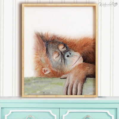 Sleeping Orangutan Digital Print