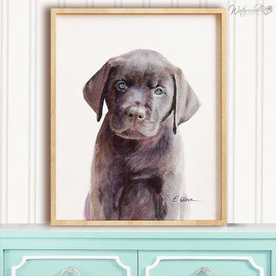 Chocolate Labrador Puppy Shipped Print
