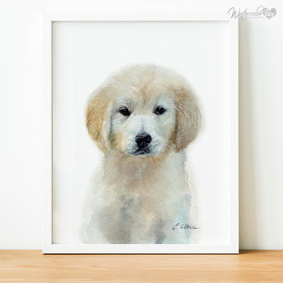 Light Golden Retriever Puppy Digital Print