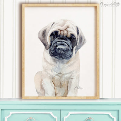 Mastiff Puppy Digital Print