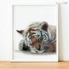 Sleeping Baby Tiger Cub Digital Print