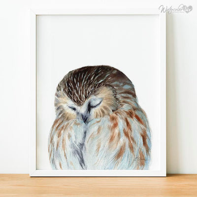 Sleeping Owl Digital Print