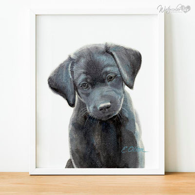 Black Labrador Retriever Puppy Digital Print