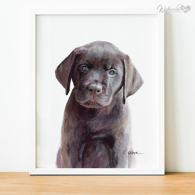 Chocolate Labrador Puppy Digital Print