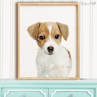 Jack Russell Terrier Puppy Digital Print
