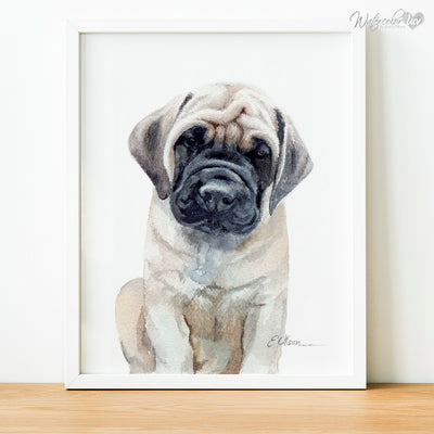 Mastiff Puppy Shipped Print