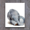 Sleeping Baby Elephant Digital Print