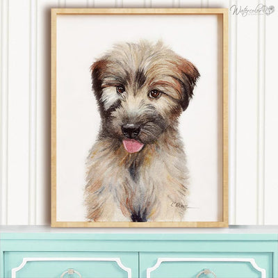 Soft Coated Wheaten Terrier Puppy Shipped Print