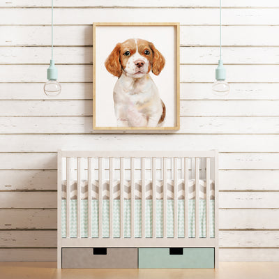 Brittany Spaniel Puppy Shipped Print