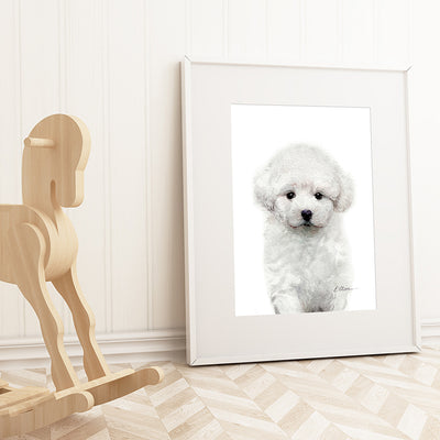 Bichon Frise Puppy Digital Print