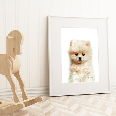 Pomeranian Puppy Digital Print