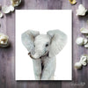 Baby Elephant Digital Print