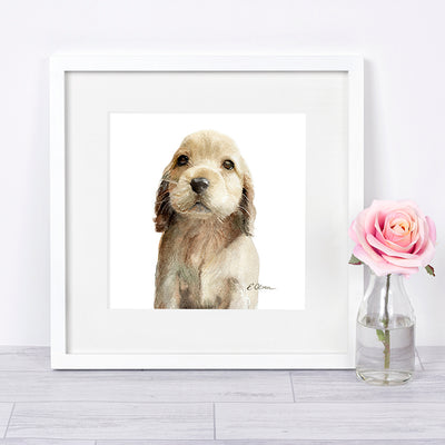 Cocker Spaniel Puppy Shipped Print