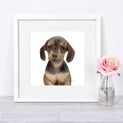 Dachshund Puppy Digital Print