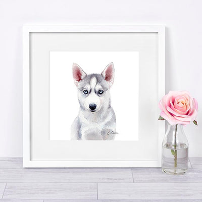 Husky Puppy Shipped Print