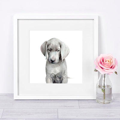 Weimaraner Puppy Digital Print