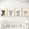 Bulldog Puppy Shipped Print