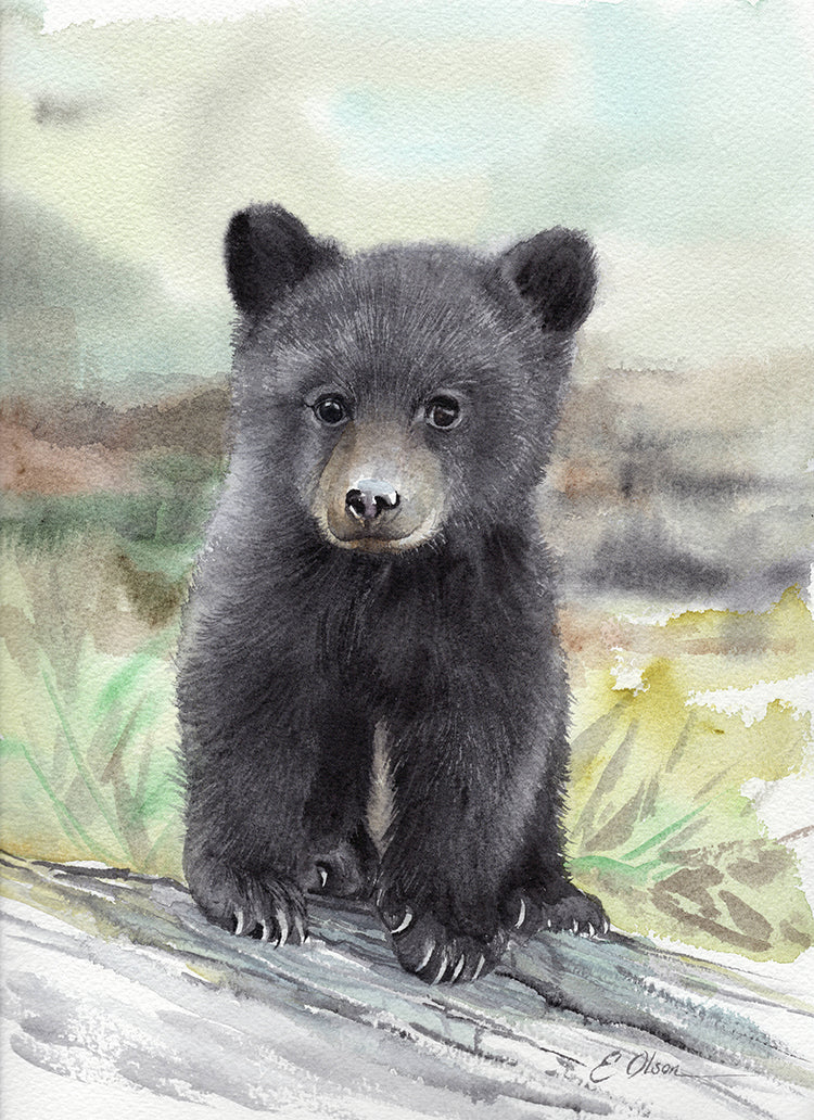 Black Bear Cub Original Watercolor Painting
