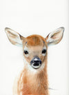 Baby Deer Fawn Head Original Watercolor Painting