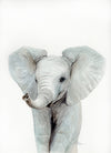 Baby Elephant Head Original Watercolor Painting