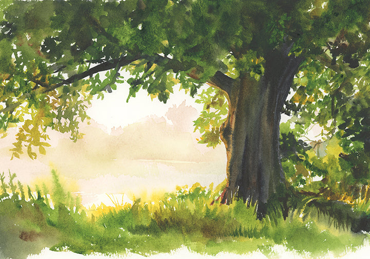 Backlit Tree Original Watercolor Painting
