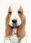 Basset Hound Puppy Original Watercolor Painting