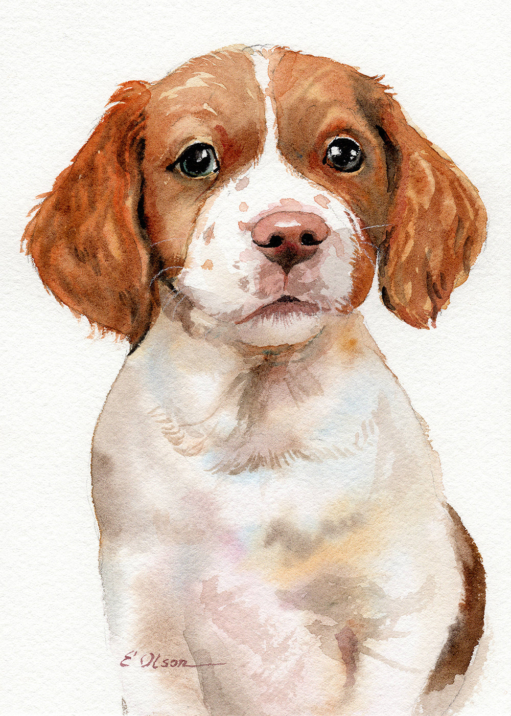 Brittany Puppy Original Watercolor Painting