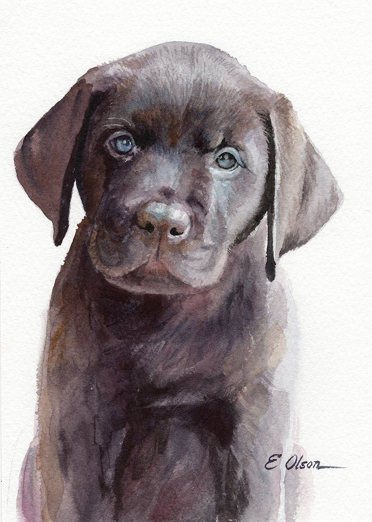 Chocolate Labrador Puppy Original Watercolor Painting