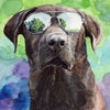 Chocolate Labrador in Sunglasses Original Watercolor Painting