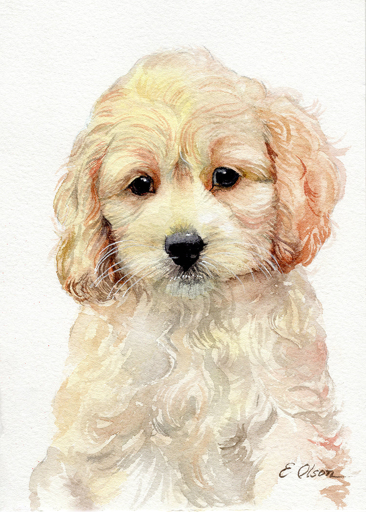 Cockapoo Puppy Original Watercolor Painting