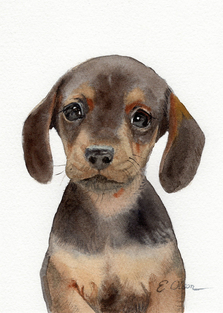 Dachshund Puppy Original Watercolor Painting