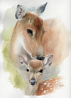 Doe and Fawn Original Watercolor Painting