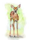 Standing Fawn Original Watercolor Painting
