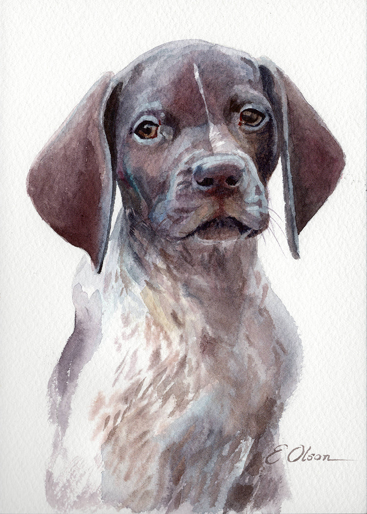 German Shorthaired Pointer Puppy Original Watercolor Painting