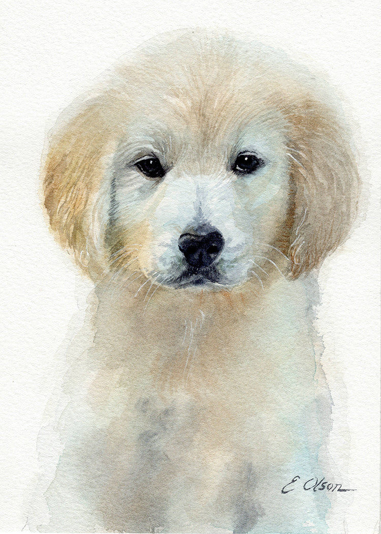 Golden Retriever Puppy Original Watercolor Painting