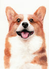 Pembroke Welsh Corgi Original Watercolor Painting