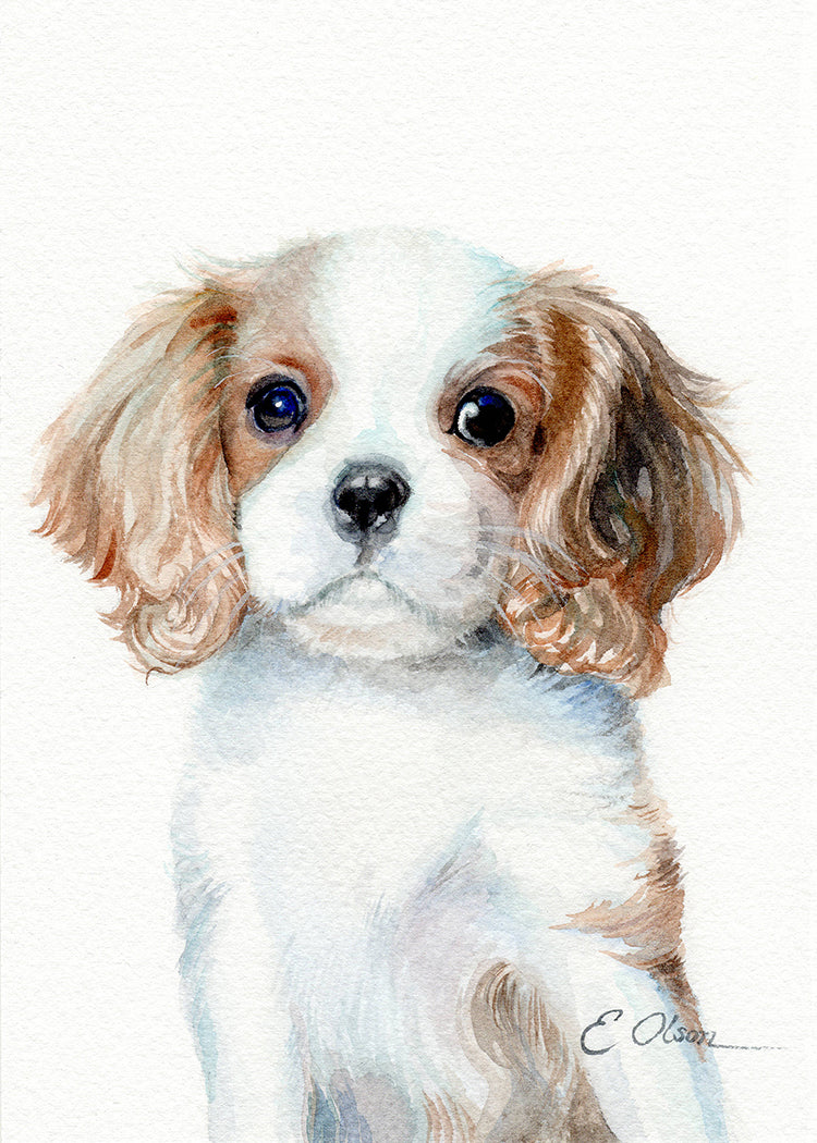King Charles Cavalier Spaniel Puppy Original Watercolor Painting