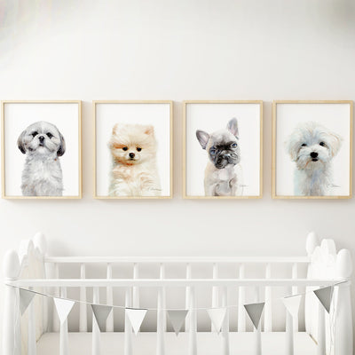Shih Tzu Puppy Digital Print