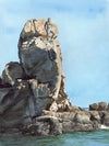 Pelican Rock, Cabo Original Watercolor Painting
