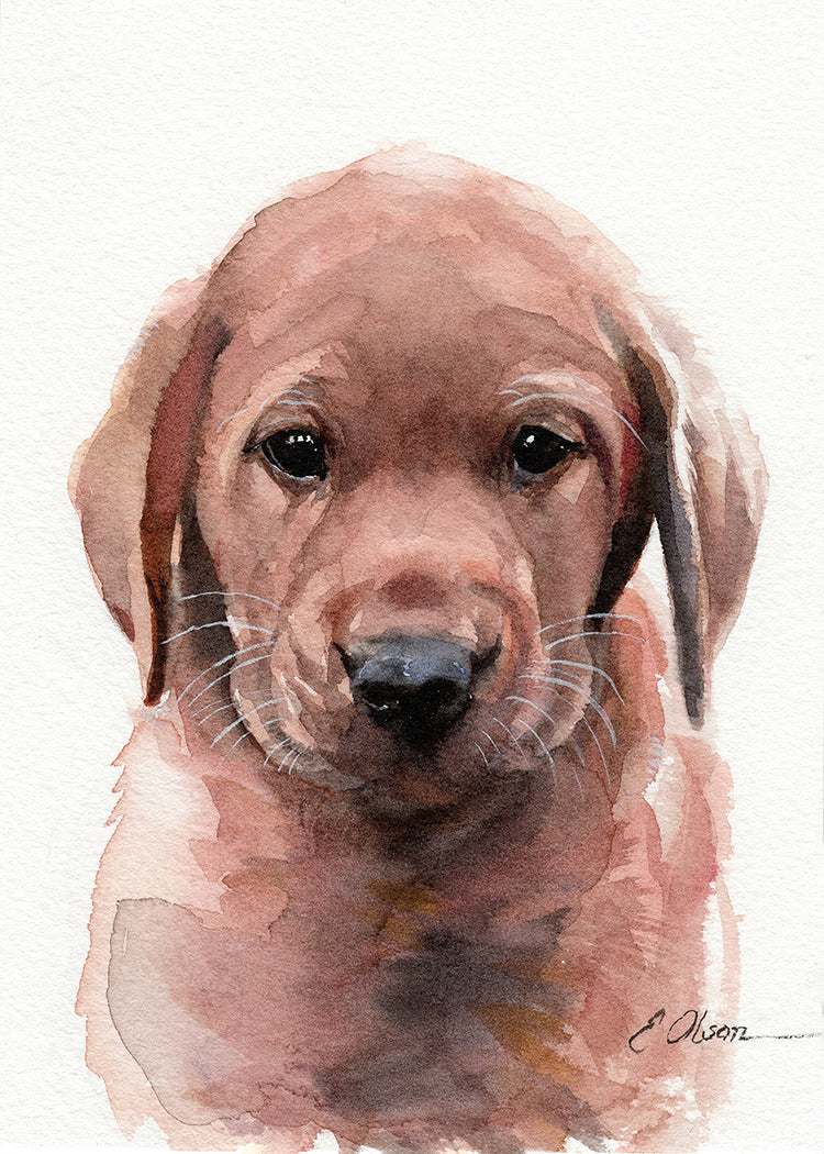 Red Lab Puppy Original Watercolor Painting