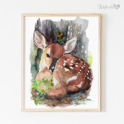 Resting Baby Deer Fawn Shipped Print
