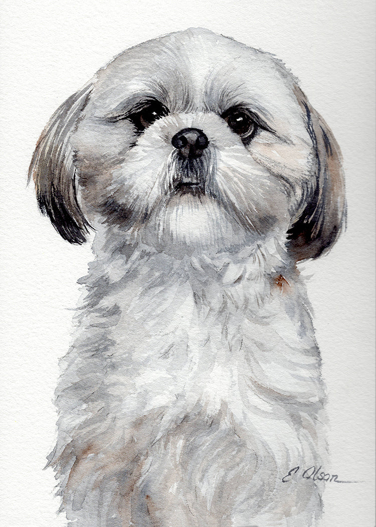 Shih Tzu Puppy Original Watercolor Painting